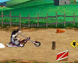 Vaca Motociclista